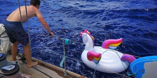 The Coast Guard Is On The Hunt For This Unicorn's Master