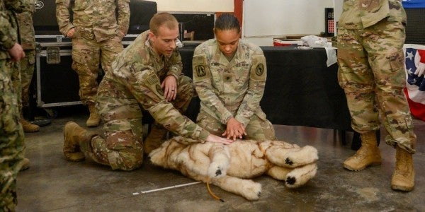 Is There Such A Thing As Canine Stolen Valor?