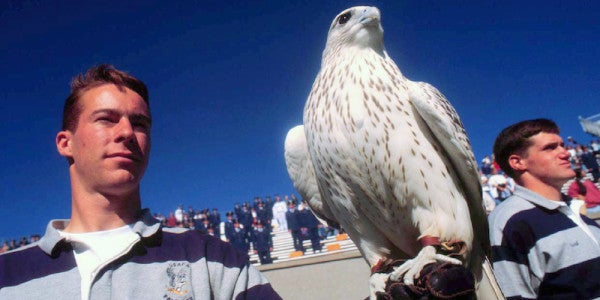 The Air Force Academy's Injured Falcon Mascot Is Expected To Make A Full Recovery