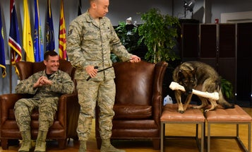 How to Retire a Military Working Dog