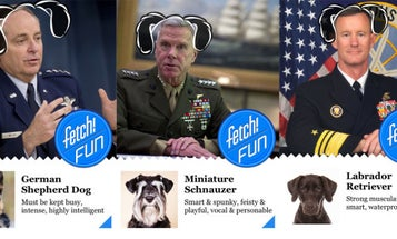 11 Top Post-9/11 Generals As Dogs