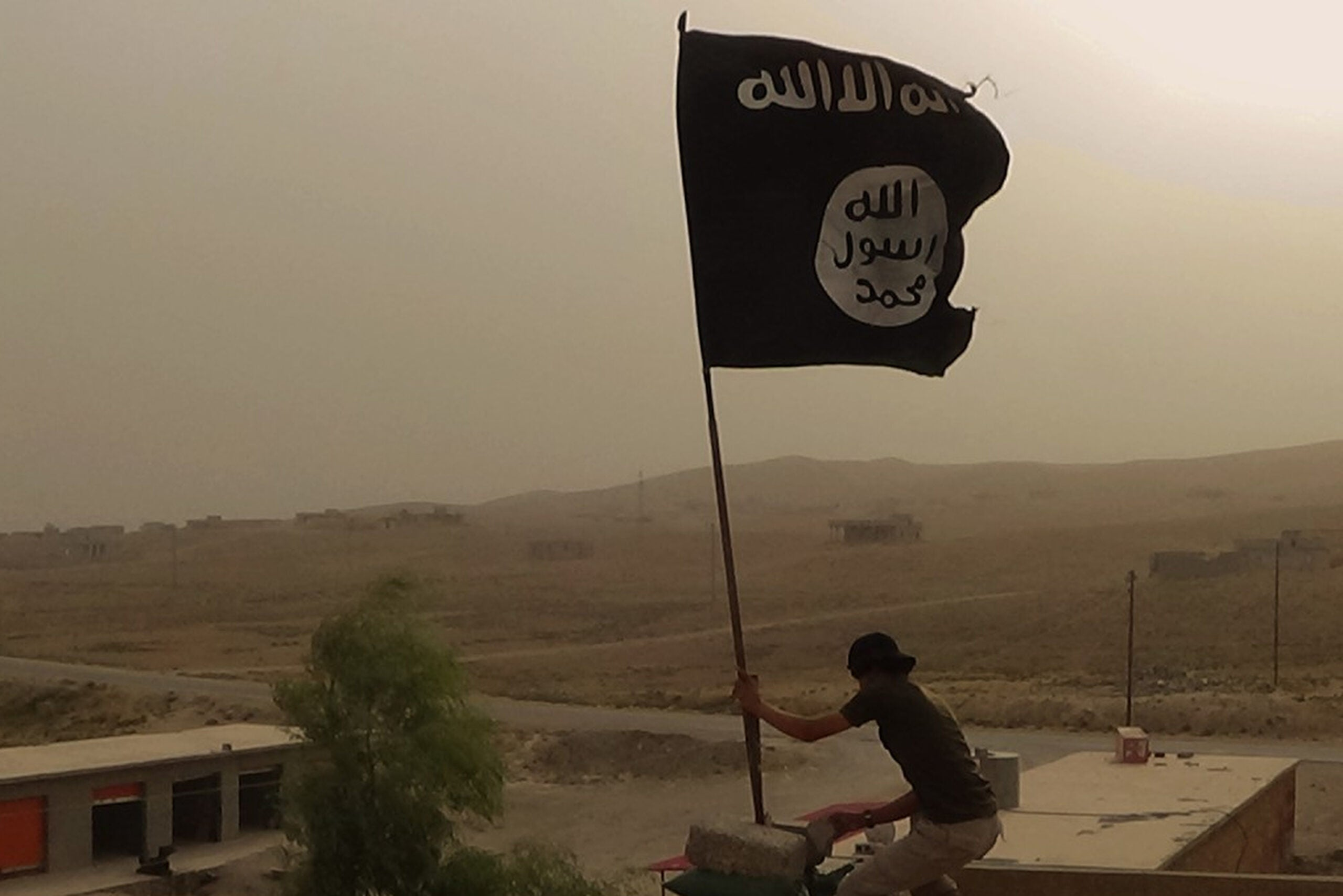 Leader of Pentagon task force to defeat ISIS reportedly fired