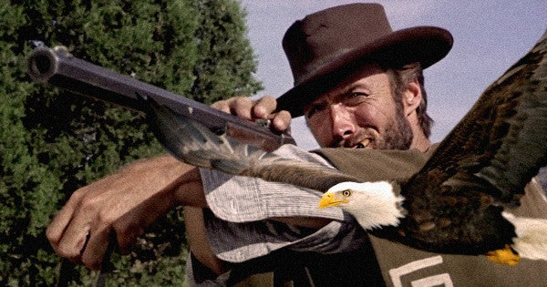 Army Vet Uses Rifle To Rescue Bald Eagle Clint Eastwood-Style