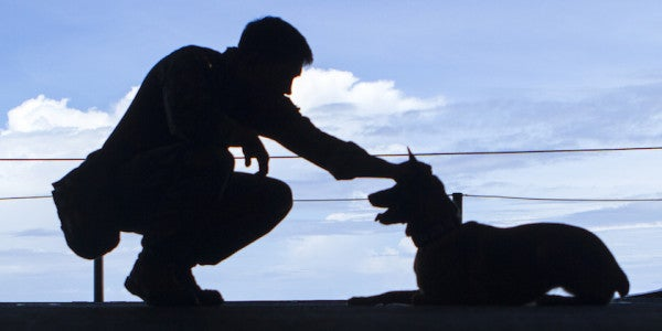 Bomb-Sniffing Dog That Deployed To Iraq Twice Receives Full Military Honors