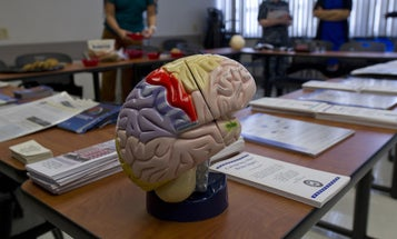 Traumatic brain injury is often called an 'invisible' wound. It's anything but