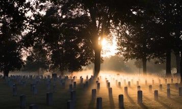 Arlington National Cemetery Bans Pets From Its Grounds