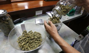 As The White House Wages War On Legal Marijuana, Veterans Side With Pot
