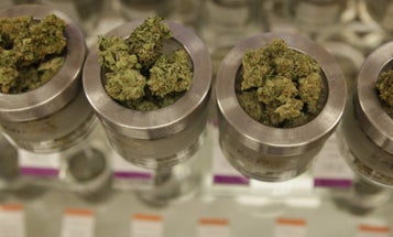 Study Of Marijuana's Effects On PTSD Struggles To Recruit Vets
