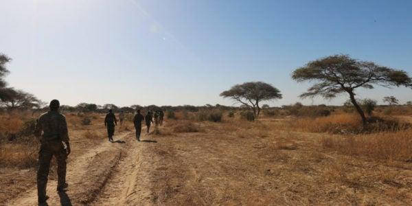 REPORT: 3 Green Berets Killed In Niger Ambush