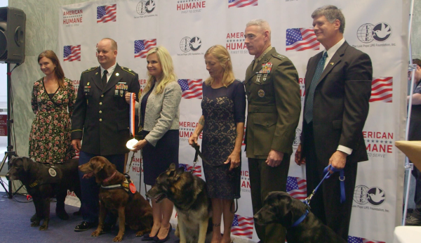 Very Good Dog Veterans Receive Medals For Courage In Battle