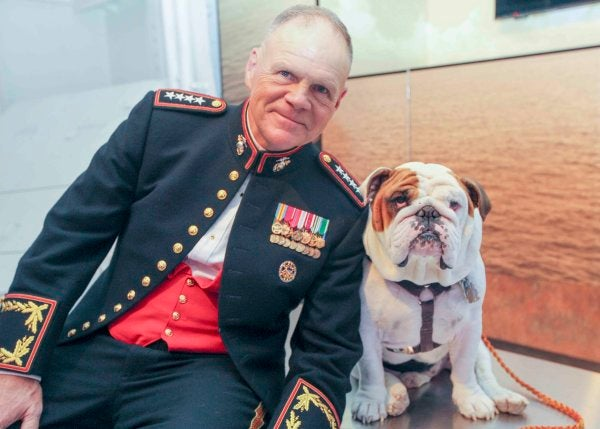 Friday Dog: Chesty XV, The Marine Corps Bulldog