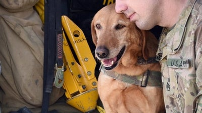A Soldier's Dog And A Dog's Soldier
