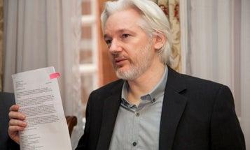 Julian Assange sentenced to 50 weeks in British jail for skipping bail
