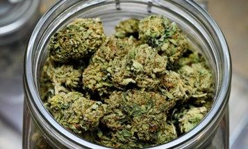 A disabled vet says he was denied a VA mortgage over his marijuana dispensary job