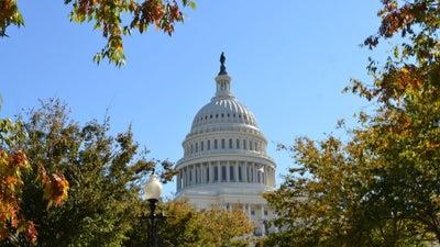 Your Washington DC Area Guide