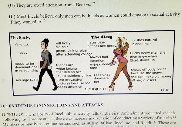 This is a real slide from an Air Force brief on the real threat of incels