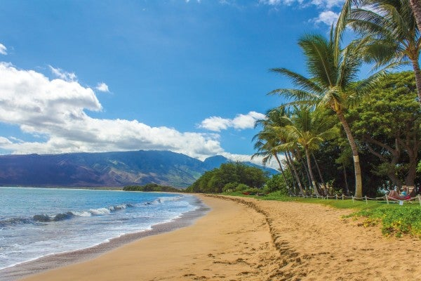 Your Hawaii Area Guide
