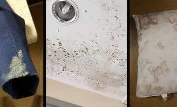The worst part about the mold crisis at Lackland Air Force Base is how unsurprising it is