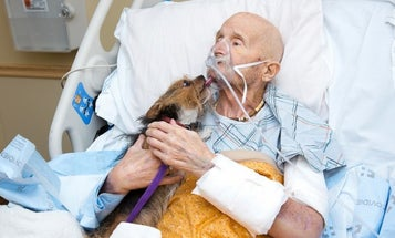 Vietnam veteran in hospice care had a simple request: To reunite with his dog one last time