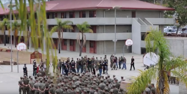 Video shows mass arrest of 16 Marines at Camp Pendleton on human smuggling charges