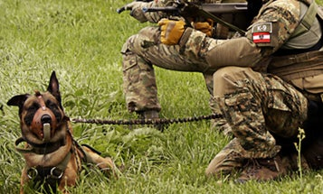 An elite Austrian soldier was apparently killed by the working dogs he was feeding