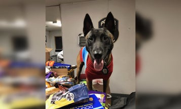 NYPD K9 units help collect care packages for 'war dogs' serving overseas