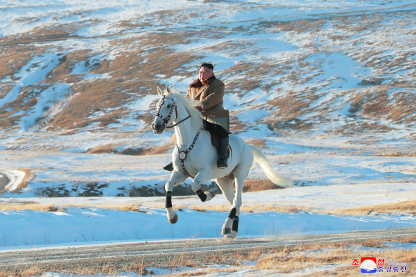 Kim Jong Un keeps spending tens of thousands of dollars on horses from Russia
