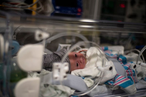 They were born premature in South Korea. In the midst of a pandemic, a joint military effort got them back to the US