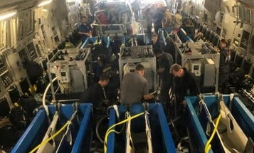 Photos show Navy's mine-sniffing dolphins being transported on Air Force cargo plane