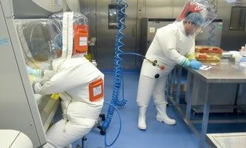 No, a defense contractor didn't prove that COVID-19 escaped a Chinese laboratory
