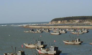 Hundreds of Chinese fishing boats lurking off South America add to fears about a future war for fish