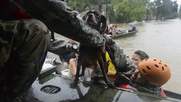 30,000 National Guard Troops Prepared To Assist In Response To Harvey
