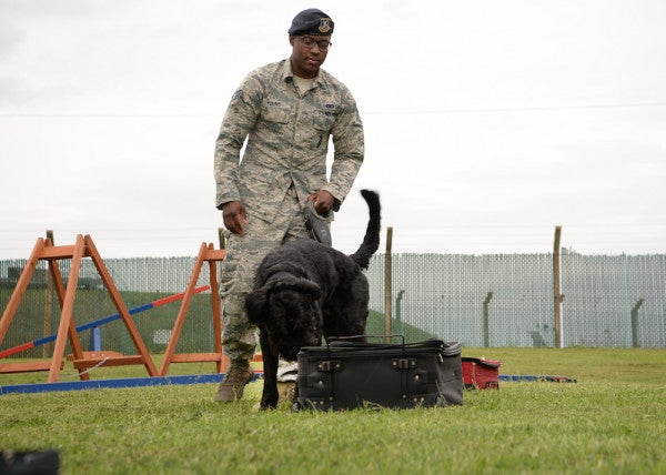 New Breed Of Military Working Dog Leaves His Mark On The Air Force
