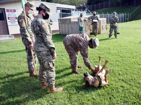 Military working dog retires to Fort Couch after pristine career