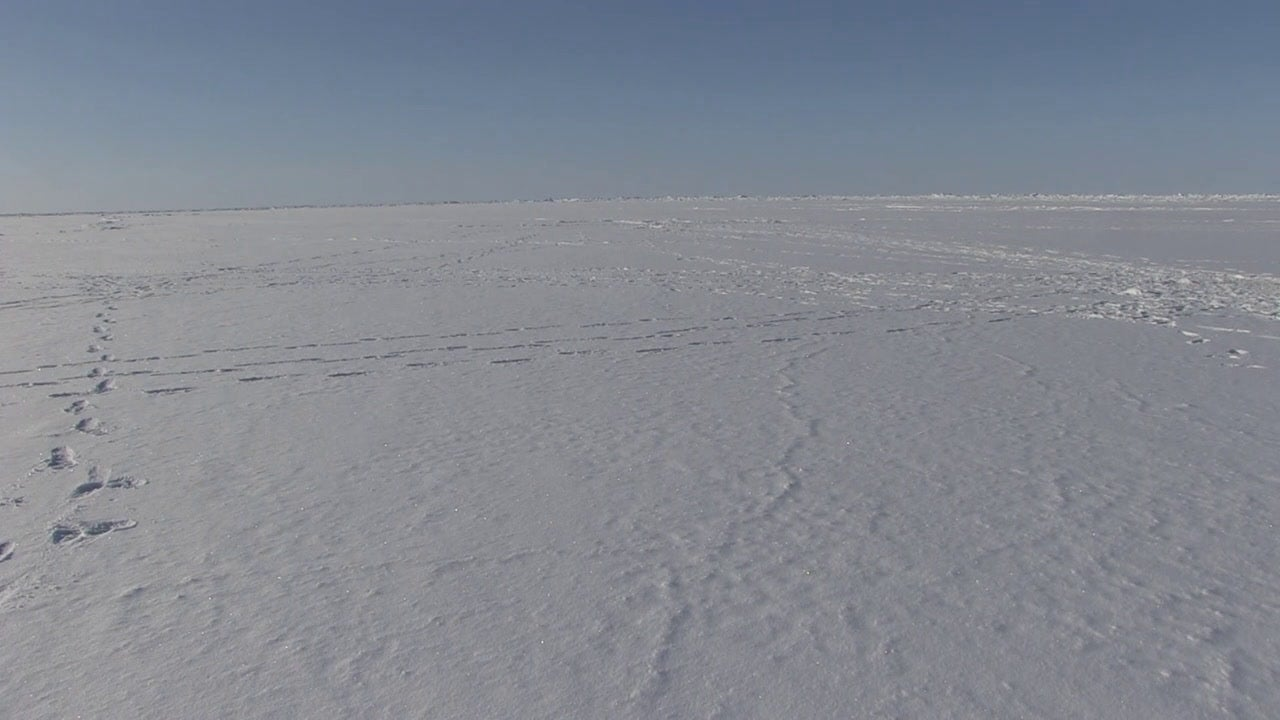 USS Hartford (SSN 768) Surfacing in the Arctic Ocean for ICEX