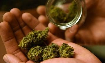 The VA May Soon Be Forced Into Medical Marijuana Research. Finally