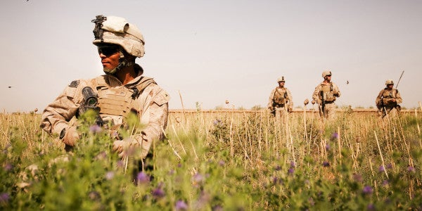 How Leading Patrols In Military Training Improves Learning Overall