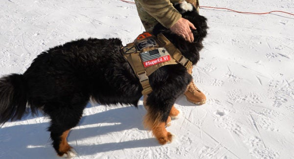 'Ed,' Snow Dog Of The National Guard