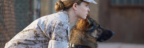 Megan Leavey Is A Good Iraq War Film. But Is It 'Stolen Valor'?