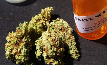 DEBATE THIS: Should Marijuana Use Be Legalized Under Federal Law For Medical Purposes?