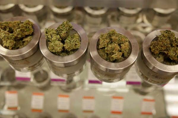 Every Veteran Deserves Legal Access To Medical Marijuana