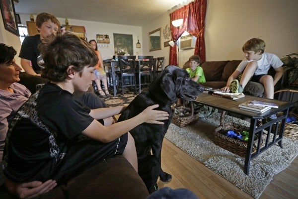 Service Dog's Mission Continues After Owner's Death
