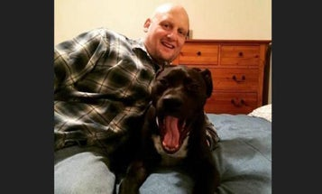 This Iraq War Vet Was Booted From A Gun Show Because Of His Service Dog