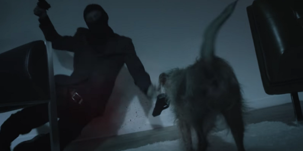In Hilarious 'John Wick' Spoof, The Dog Is Back And Looking For Vengeance