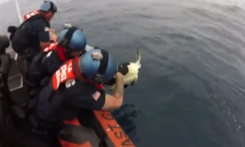 Watch A Coast Guard Crew Find Trapped Sea Turtles While Searching For Drugs