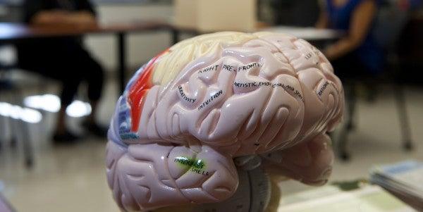10 Myths About Traumatic Brain Injury