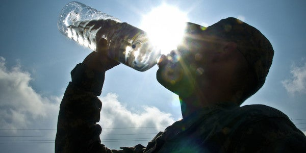 A Vet's Advice On Dehydration And How to Avoid It