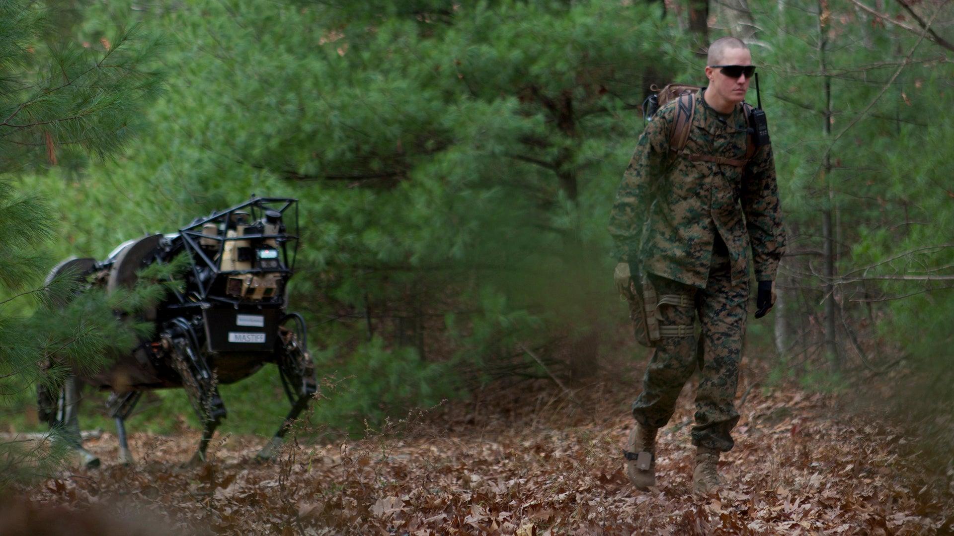 marine corps robot mule