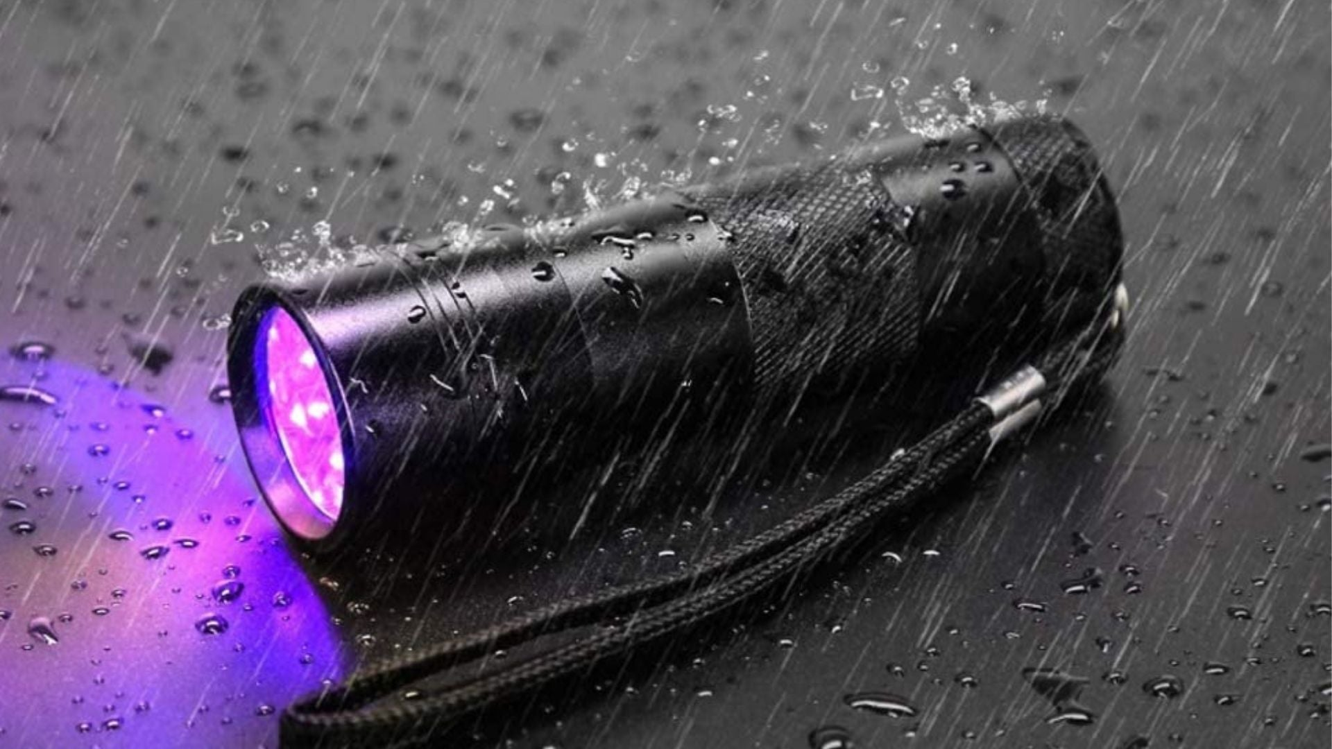 UV Flashlights