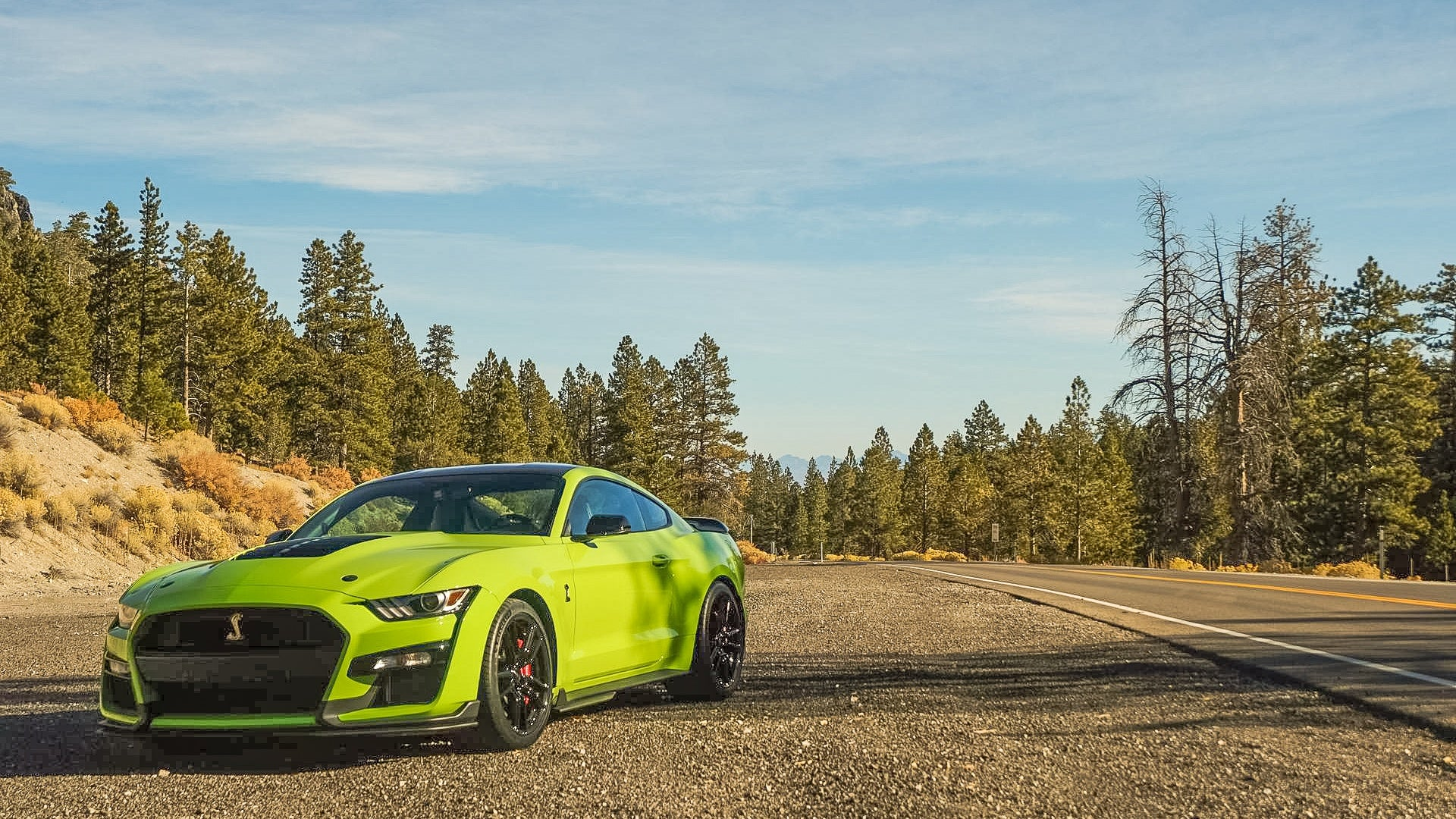 Ford's new GT500 Mustang.